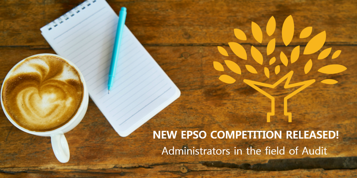 2019 EPSO Administrators in the field of Audit Competition